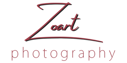Zoart Photography | Sacramento | Bay Area | Wedding Photography