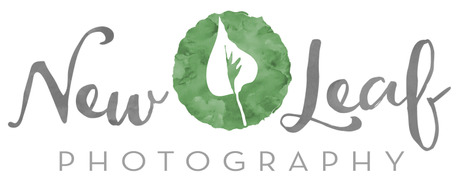 New Leaf Photography
