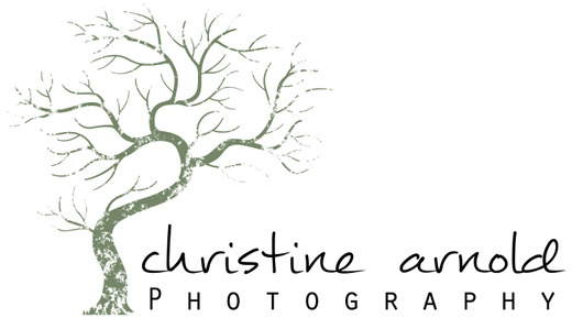 Christine Arnold Photography in Palm Springs